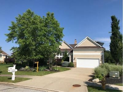 Solon Single Family Home For Sale: 7224 Formby Drive