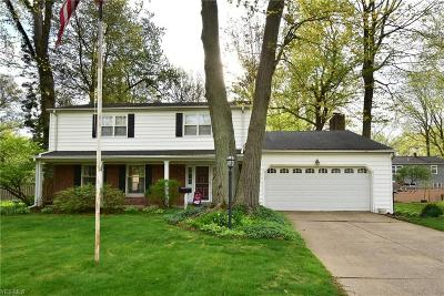 Avon Lake Single Family Home For Sale: 277 Parkview Dr