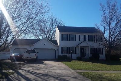 Brunswick Single Family Home For Sale: 483 Brambleside Dr