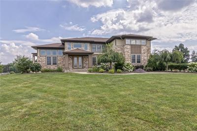 Chagrin Falls Single Family Home For Sale: 9665 Nighthawk Dr