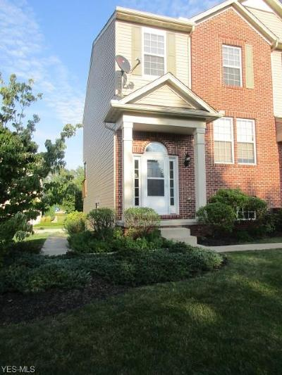 Copley Rental For Rent: 258 Woodhaven Dr