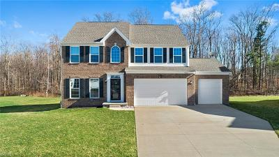 Twinsburg Single Family Home For Sale: 10361 Flagstone Dr
