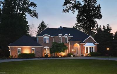 Westlake Single Family Home For Sale: 29622 Devonshire Oval