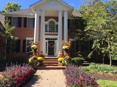 Solon Single Family Home For Sale: 6178 Cedar Ct