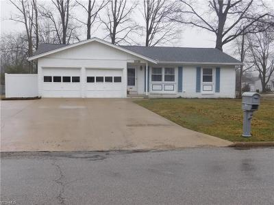 Ashland County Single Family Home For Sale: 1100 Columbus Circle South