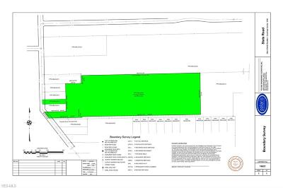 North Royalton Residential Lots & Land For Sale: State Road