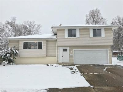 Brook Park Single Family Home For Sale: 14049 Holland Rd