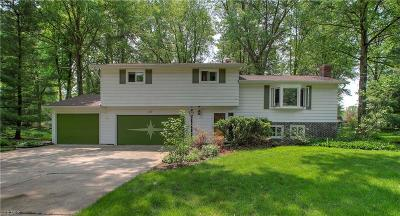 Northfield Single Family Home For Sale: 110 Laurie Ln