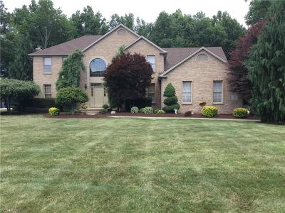 Canfield Single Family Home For Sale: 7125 Saint Ursula Dr