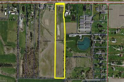 Litchfield Residential Lots & Land For Sale: 8858 Norwalk Rd