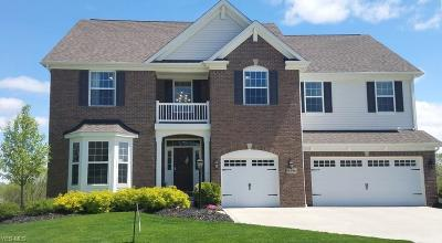 Twinsburg Single Family Home For Sale: 9396 Grace Dr