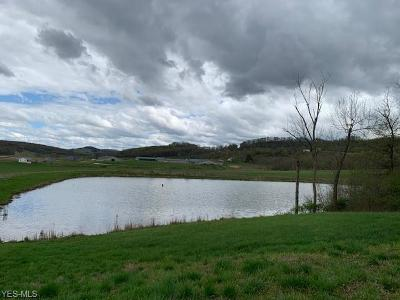 Guernsey County Residential Lots & Land For Sale: 19002 Raven Rd