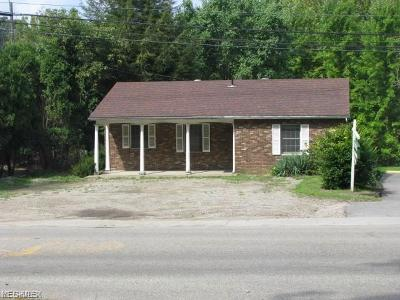 Guernsey County Commercial For Sale: 65015 Old Twenty One Road