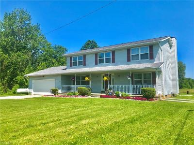 Litchfield Single Family Home For Sale: 8925 Norwalk Road