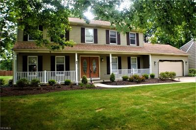 Lorain County Single Family Home For Sale: 2249 Holly Ln