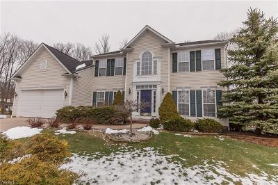 Broadview Heights Single Family Home For Sale: 4775 Westminster Ln