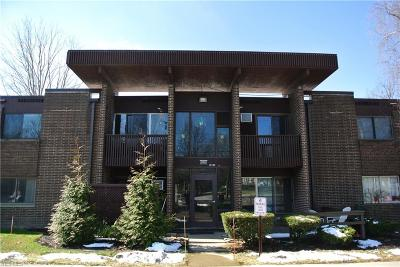 Sagamore Hills Condo/Townhouse For Sale: 10740 Valley View Rd. #A-19