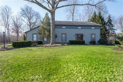 Canfield Single Family Home For Sale: 500 Millbrook St