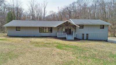 Muskingum County Single Family Home For Sale: 12070 Blackstone Ln