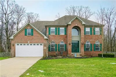 Twinsburg Single Family Home Contingent: 9356 Wallingford Dr