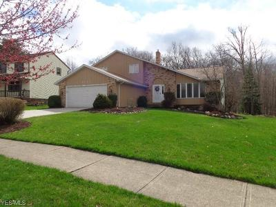 Parma Single Family Home Contingent: 9123 Running Brook Dr
