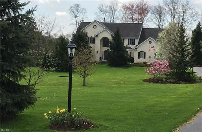 Chagrin Falls Single Family Home For Sale: 12101 Marydale Dr