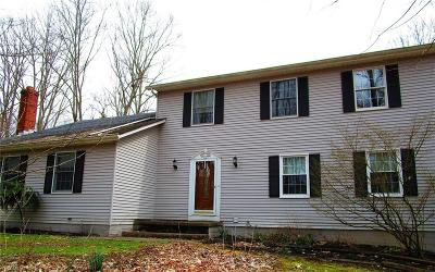 Hinckley Single Family Home For Sale: 1729 King Rd
