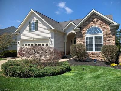 Avon Single Family Home For Sale: 39154 Courseview