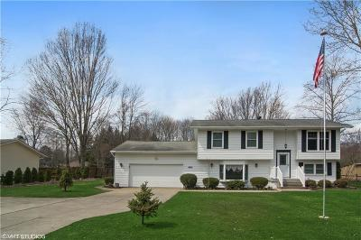 Columbia Station Single Family Home Contingent: 13378 North Boone Rd