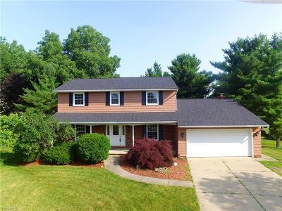 Medina County Single Family Home For Sale: 4769 Persimmon Lane