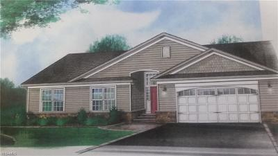 Broadview Heights Single Family Home Contingent: S/L 5 Tollis Parkway