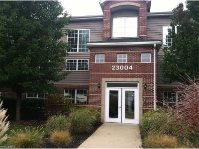 Olmsted Falls Condo/Townhouse For Sale: 23004 Chandlers Ln #4-343