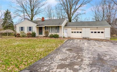 Mahoning County Single Family Home For Sale: 7366 Hitchcock Rd