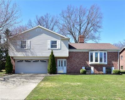 Rocky River Single Family Home For Sale: 3580 Archwood Dr