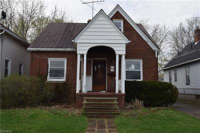Lorain Single Family Home For Sale: 1045 W 14th Street
