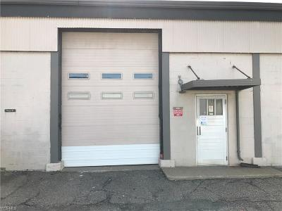 Canton Commercial For Sale: 207 9th St Southwest