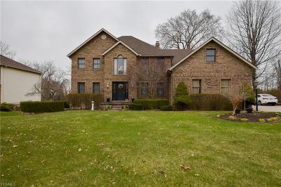 Hinckley Single Family Home For Sale: 147 Lakecrest Blvd