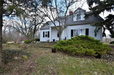 Chagrin Falls Single Family Home For Sale: 8866 Washington St