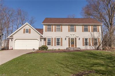 Twinsburg Single Family Home For Sale: 2801 Mathers Way