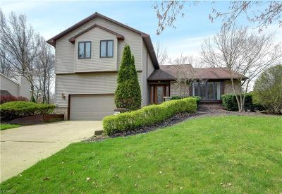 Canfield Single Family Home For Sale: 520 Stoneybrook Ln