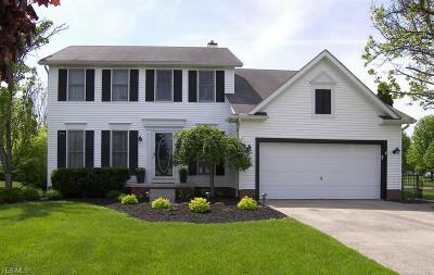 Twinsburg Single Family Home Active Under Contract: 10426 Springwood Circle
