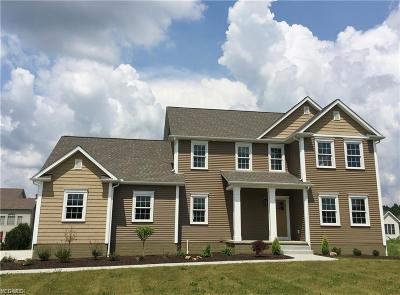 Canfield Single Family Home For Sale: 7547 Orchard Park Dr