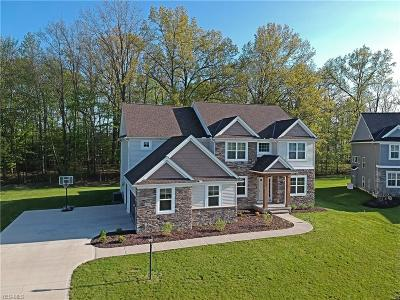 Strongsville Single Family Home For Sale: 11525 Love Lane