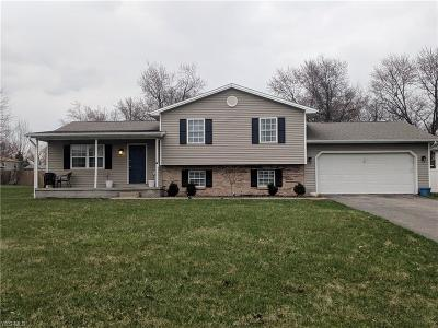 Youngstown Single Family Home For Sale: 1255 Signature Dr