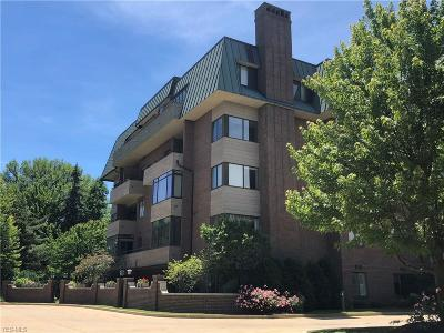 Lyndhurst Condo/Townhouse For Sale: 5150 Three Village Dr #2K
