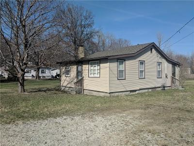 Painesville OH Single Family Home For Sale: $54,900