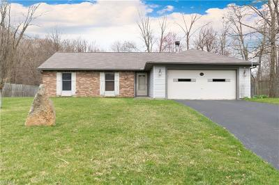 Youngstown Single Family Home For Sale: 628 Wyndclift Cir