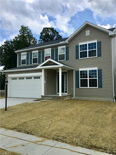 Reminderville Single Family Home For Sale: 3794 Juniper Drive