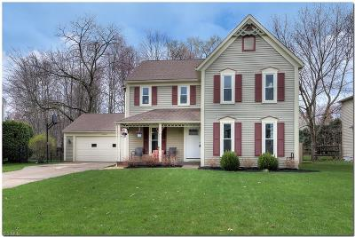 Solon Single Family Home For Sale: 31936 South Roundhead Dr