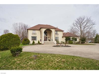 Hinckley Single Family Home For Sale: 1776 Stony Hill Road